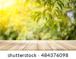 empty wooden table with garden... | Shutterstock . vector #484376098
