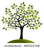vector apple tree in two... | Shutterstock .eps vector #484521148
