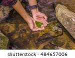 clear natural water and leaves... | Shutterstock . vector #484657006