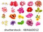 flower set | Shutterstock . vector #484660012