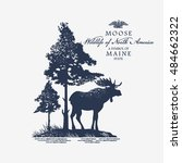 moose  wildlife of america ... | Shutterstock .eps vector #484662322