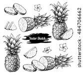vector pineapples hand drawn... | Shutterstock .eps vector #484706662