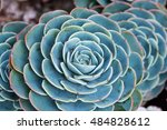 rectangular arrangement of... | Shutterstock . vector #484828612