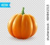 realistic vector pumpkin... | Shutterstock .eps vector #484841515