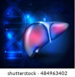 liver anatomy abstract blue... | Shutterstock . vector #484963402
