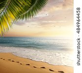 idyllic tropical beach with... | Shutterstock . vector #484964458