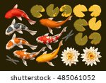 set of koi fish and lotus | Shutterstock .eps vector #485061052