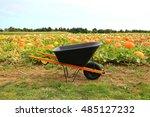 Wheelbarrow In The Pumpkin...