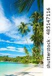 coconut coast idyllic island    Shutterstock . vector #485147116