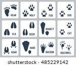 animal tracks vector icons set | Shutterstock .eps vector #485229142