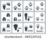 animal tracks vector icons set | Shutterstock .eps vector #485229142