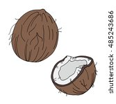 Set Of Coconuts Icon. Coconut...