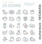 set vector line icons in flat... | Shutterstock .eps vector #485286406