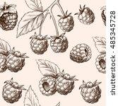 juicy raspberries. vector... | Shutterstock .eps vector #485345728