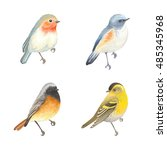 collection of beautiful birds... | Shutterstock .eps vector #485345968
