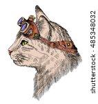 cat portrait steam punk with... | Shutterstock .eps vector #485348032