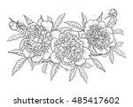 beautiful monochrome black and... | Shutterstock .eps vector #485417602