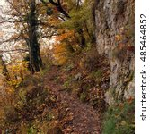Small photo of Narrow trail between trees, rocks and abyss. Autumn landscape in warm colors.