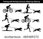 Stock vector training exercising with dog canicross bikejoring skijoring silhouettes set 485489272