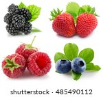 collection of berries isolated... | Shutterstock . vector #485490112