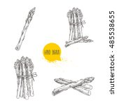 hand drawn sketch style set of... | Shutterstock .eps vector #485538655