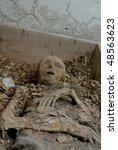 Human Body In Cemetery Cellar...