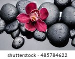 Macro Of Red Orchid On Wet...
