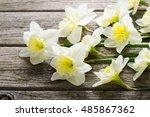 white daffodil flowers on old... | Shutterstock . vector #485867362