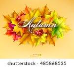 autumn leaves of maple. vector... | Shutterstock .eps vector #485868535
