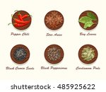 set of different kinds of... | Shutterstock .eps vector #485925622
