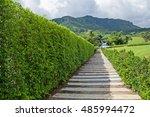 beautiful garden | Shutterstock . vector #485994472