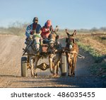 A Donkey Cart Pulled By Three...