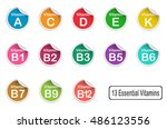 13 essential vitamin made from... | Shutterstock .eps vector #486123556