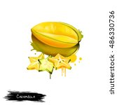 yellow fruit carambola isolated ...   Shutterstock . vector #486330736