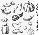 set of hand drawn vegetables....   Shutterstock .eps vector #486339406