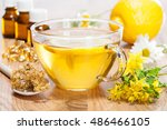 home remedies for fast flu... | Shutterstock . vector #486466105