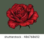 hand drawn red rose on green... | Shutterstock .eps vector #486768652