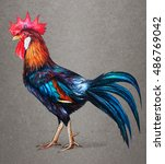 Rooster Red Crest Drawing On...