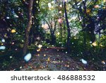 Colorful Light Sparkles In...