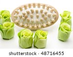 massage brush | Shutterstock . vector #48716455