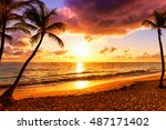 coconut palm trees against...   Shutterstock . vector #487171402