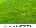 beautiful green grass pattern... | Shutterstock . vector #487178746