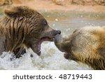 brown bears fighting in the... | Shutterstock . vector #48719443