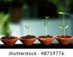 Plant Growth Baby Plants