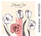 Tulip Flower Vector Set. Ink...