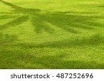 green grass background   Shutterstock . vector #487252696