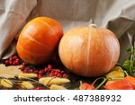 The Two Orange Pumpkins With...