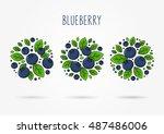 blueberry line art vector... | Shutterstock .eps vector #487486006