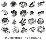 flower set | Shutterstock . vector #487500148