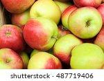 group of apples | Shutterstock . vector #487719406